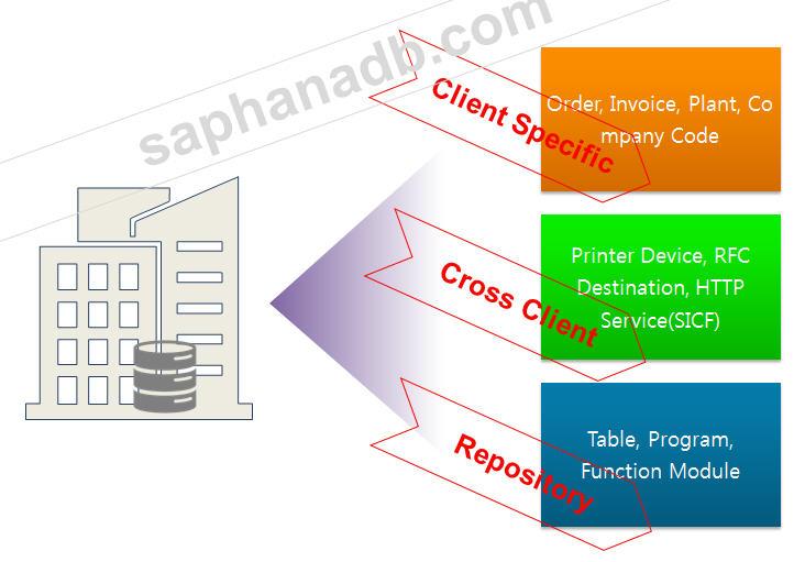 SAP Client Concept